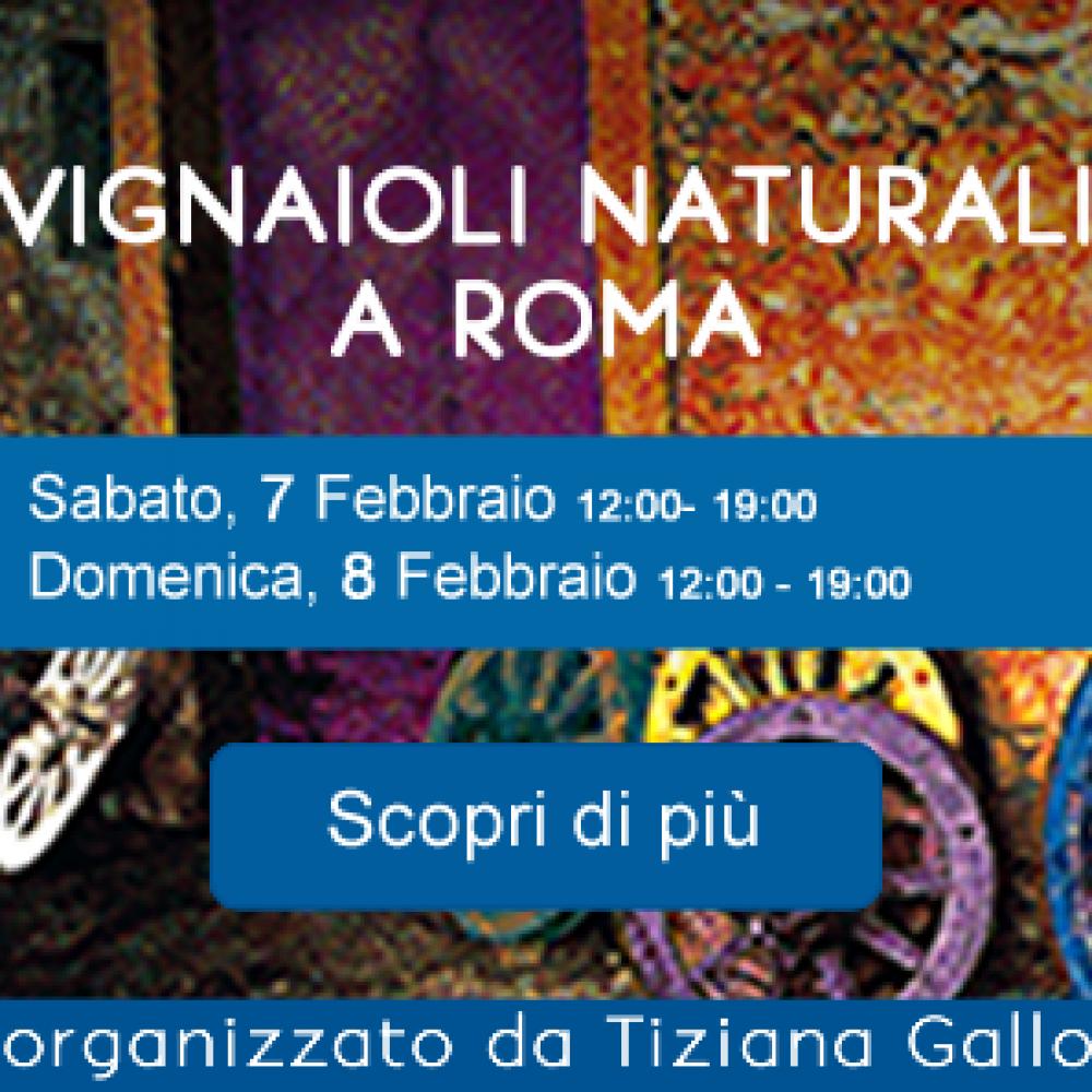 VIGNAIOLI NATURALI – ROMA 7-8 FEBBRAIO 2015